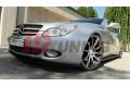 Накладки на пороги Mercedes C219