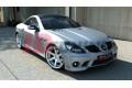 Бампер передний Mercedes SLK R171 (AMG204 look)