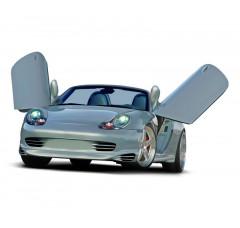 Накладки на пороги Porsche Boxter
